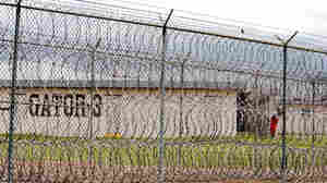 A prisoner is seen behind layers of wire razor fencing at the Louisiana State Penitentiary in Angola.