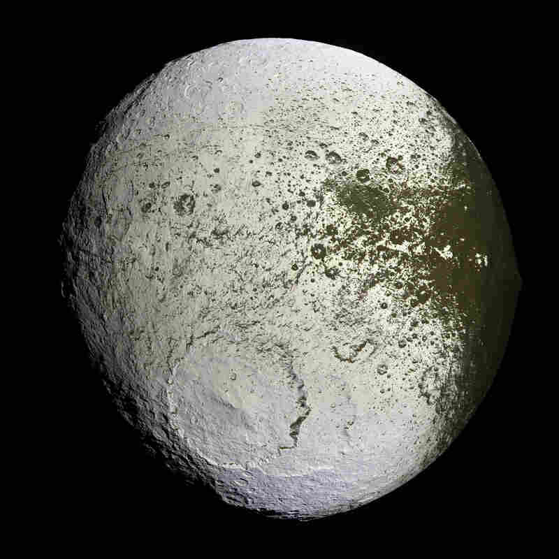 In 2007, the Cassini space probe captured this high-resolution glimpse of the bright trailing hemisphere of Saturn's moon Iapetus. This false-color mosaic shows the entire hemisphere of the two-toned moon.