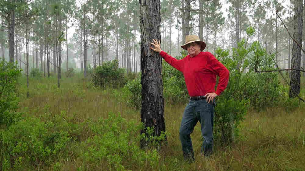 Gambler-Turned-Conservationist Devotes Fortune To Florida Nature Preserve