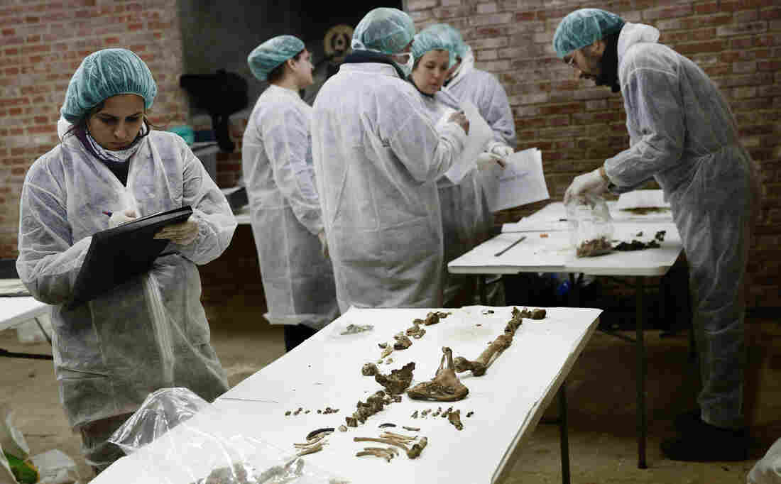 Archaeologists in Madrid study remains buried under the Convent of the Barefoot Trinitarians on Jan. 24. Tests proved the remains belonged to Miguel de Cervantes, the author of Don Quixote. Cervantes wanted to be buried at the convent because the nuns raised money and paid a ransom for his release when he was a young man held captive in North Africa.