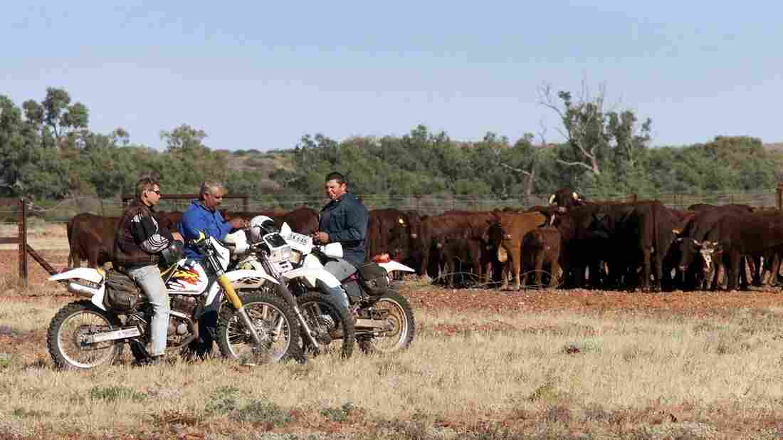 Workers from the Anna Creek cattle ranch take a break from work on the Oodnadatta Track.