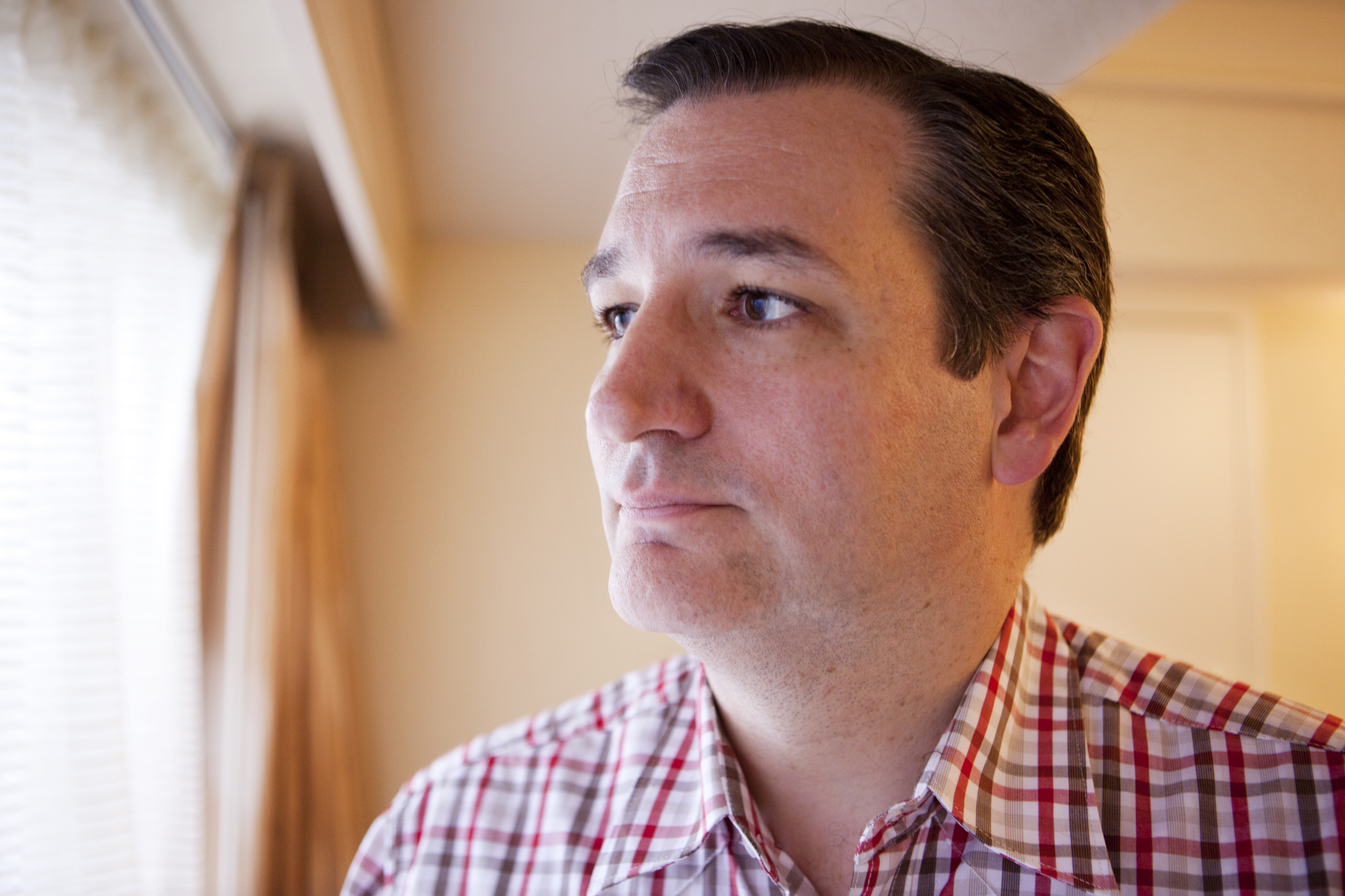 Cruz: Opposition To Same-Sex Marriage Will Be 'Front And Center' In 2016 Campaign