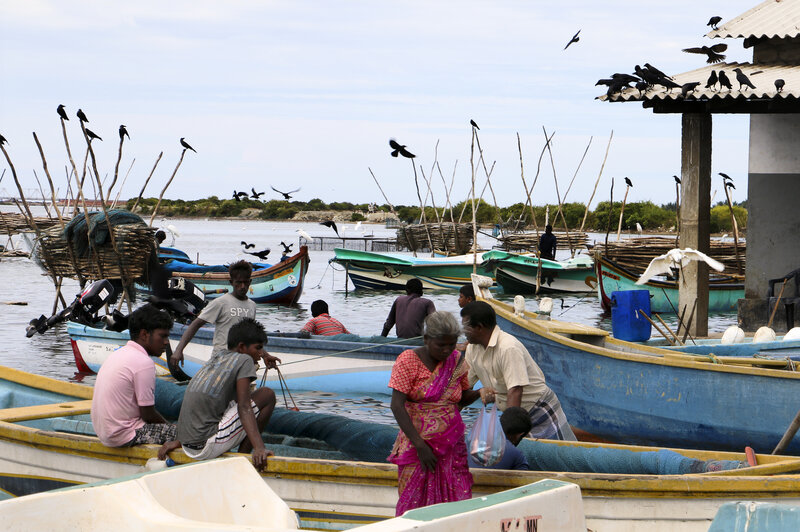 Mannar, in northern Sri Lanka, is a fishing village where ethnic Tamils live. The country's long civil war ended in 2009, but many in the village say there will not be reconciliation until there's an accounting of the thousands who disappeared during the fighting.