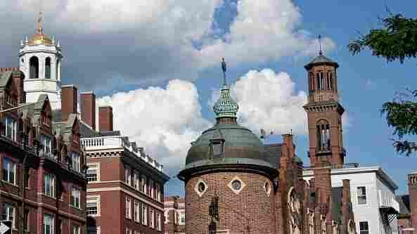 Schuyler Bailar will swim on the men's team at Harvard this fall.