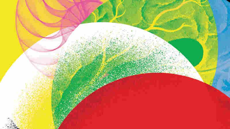 book detail crop