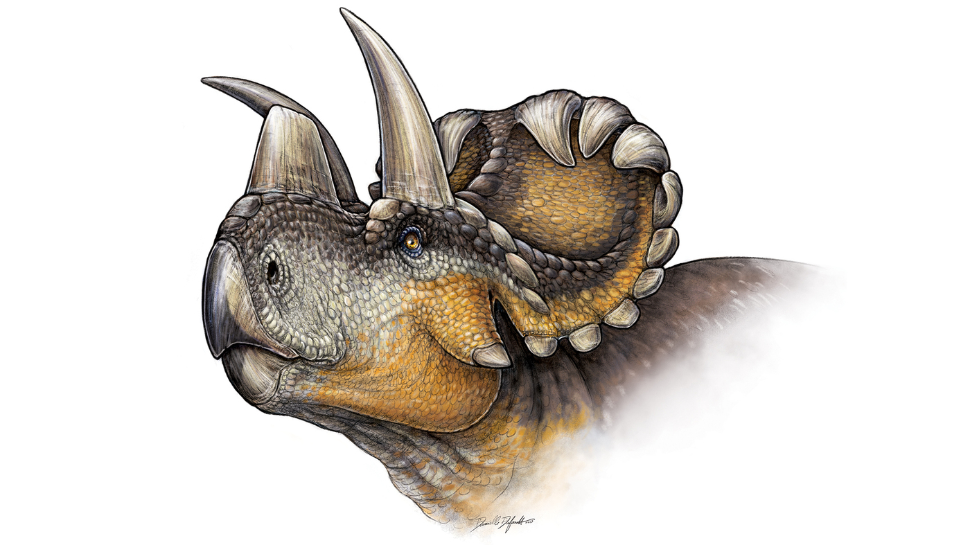 Scientists Discover One Of The Oldest Horned Dinosaurs