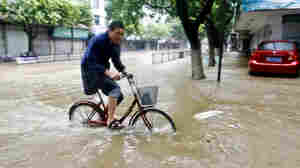 Strong Typhoon Slams Shanghai, Second In A Week For China