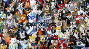 The Furries Have Landed — And Pittsburgh Is Giving Them A Bear Hug