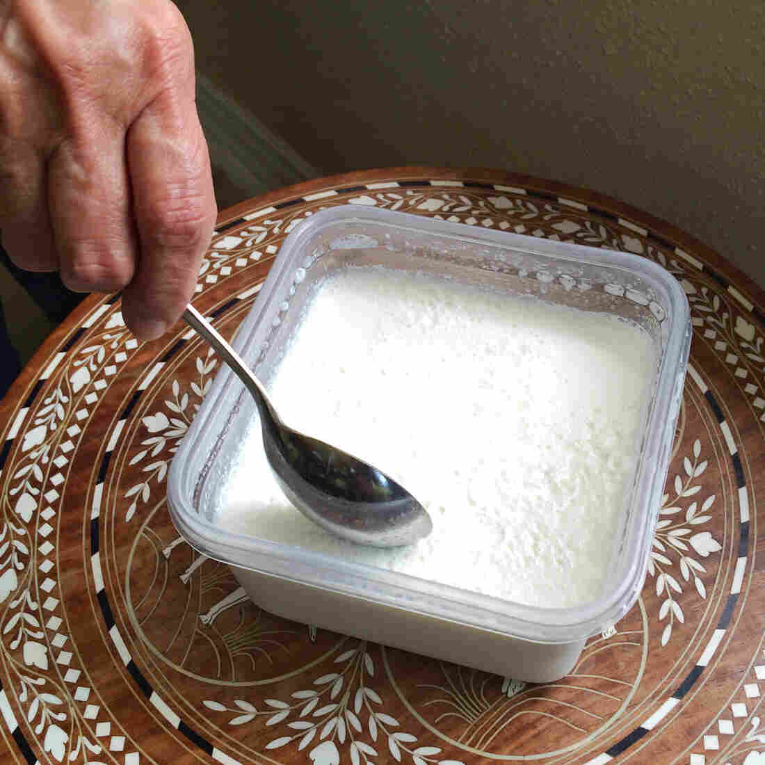 The 'Immortal' Homemade Yogurt That Traveled 'Round The World