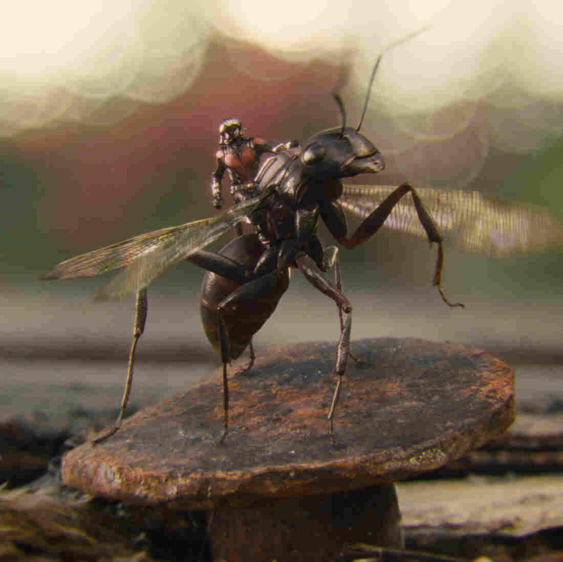 Visual effects supervisor Jake Morrison wanted Ant-Man's titular insects to be both accurate and relatable.