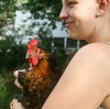 Chicken Owners Brood Over CDC Advice Not To Kiss, Cuddle Birds