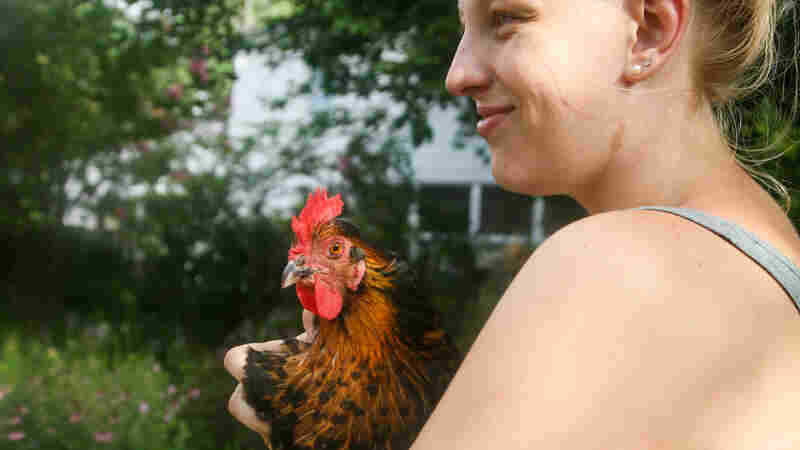 Ioanna Mattke holds Raven, one of six hens that her family owns. The Mattkes have raised Raven since she was a day old.