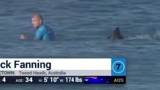 WATCH: Surfer In South Africa Narrowly Escapes Shark