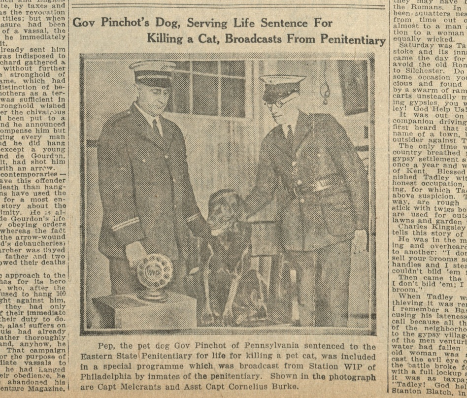 Pep is featured in the Dec. 26, 1925 issue of the <em>Boston Daily Globe.</em><em> </em>But Gov. Pinchot's wife, Cornelia, later set the tall tale straight in an interview with <em>The New York Times</em>. (The Boston Evening Globe / Courtesy of Boston Public Library)
