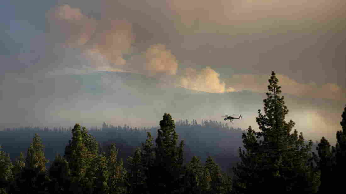 A helicopter flies near the Lake Fire in California's San Bernardino National Forest on June 19. Firefighters mobilized to combat the wildfire from the air, but they had to be grounded to avoid drones in the area.
