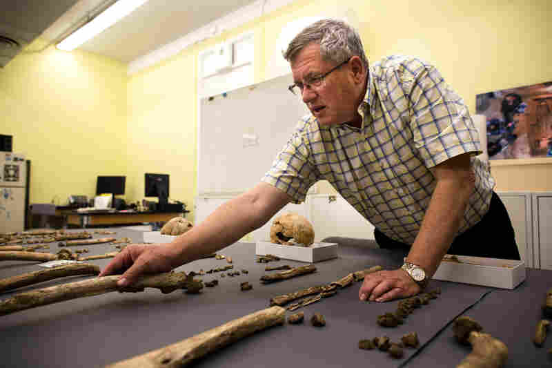 Doug Owsley, a forensic anthropologist at the Smithsonian's National Museum of Natural History, studies every detail of the skeletons.