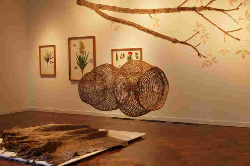 A woven fish trap by Abel Rodriguez hangs over artist Alberto Baraya's latex cast of a rubber tree.