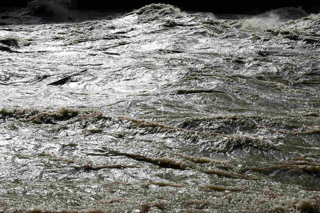 A still from Treno, a video installation about the Cauca River by the Colombian artist Clemencia Echeverri.