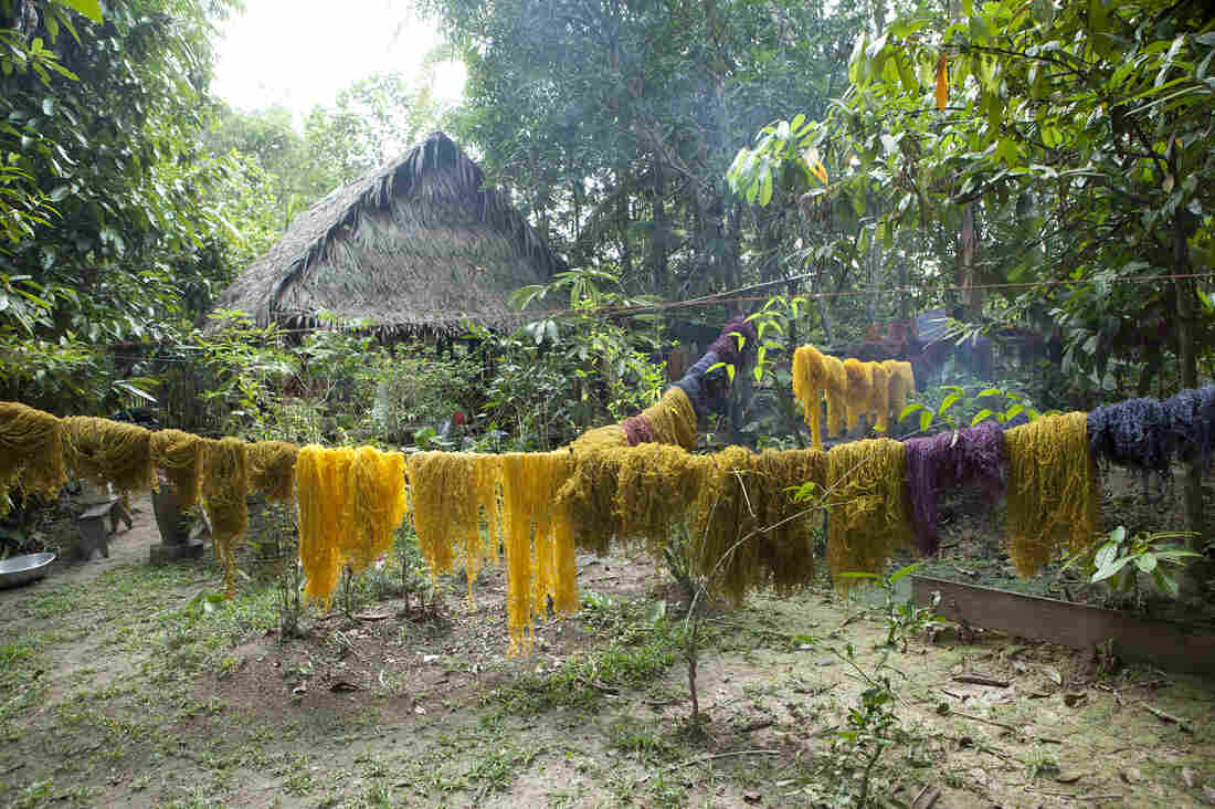 Fibers from the fique plant, dyed with natural pigments by artist Susana Mejia, are part of the Waterweavers exhibit. In the photo above, the fibers hang to dry in the Amazon jungle.