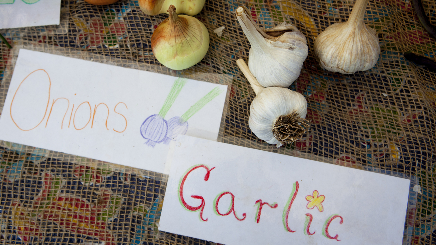 Healthy Eaters Strong Minds What School Gardens Teach Kids The