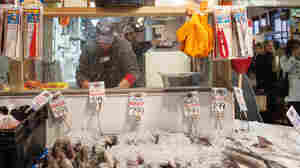 Sea bass, pollock, striped bass and other fish species are seen for sale at the Harbor Fish Market in Portland, Maine.