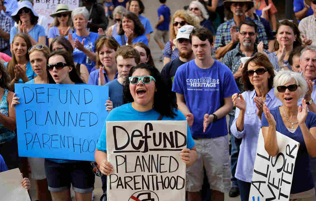 Protesters rally on the steps of the Texas state capitol on July 28 to condemn the use of fetal tissue for medical research.