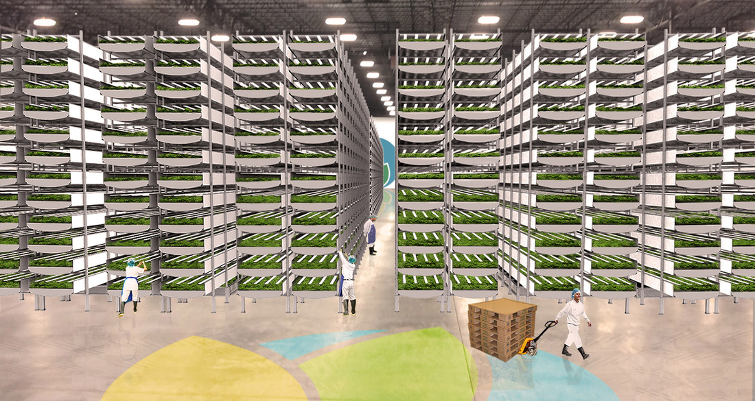Green Pie In The Sky? Vertical Farming Is On The Rise In Newark