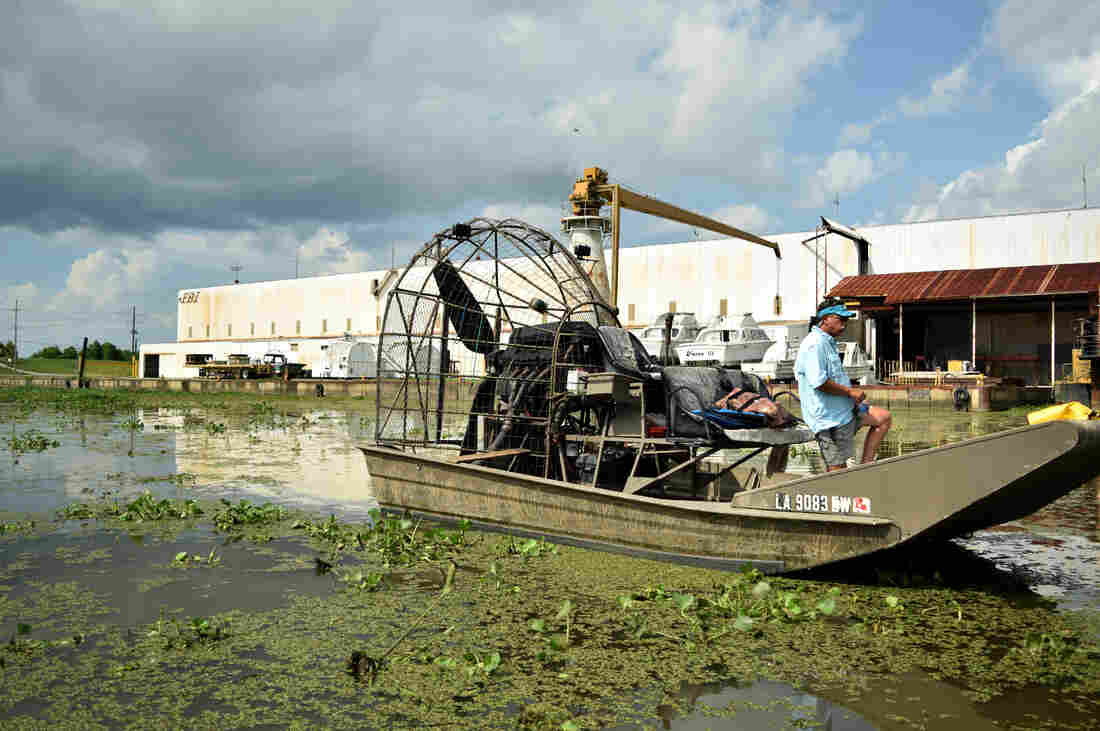 Local land manager Howard Callahan navigates his airboat, which helps local environmental groups get deep into the Breton Basin area to investigate the impact of the Caernarvon river diversion.