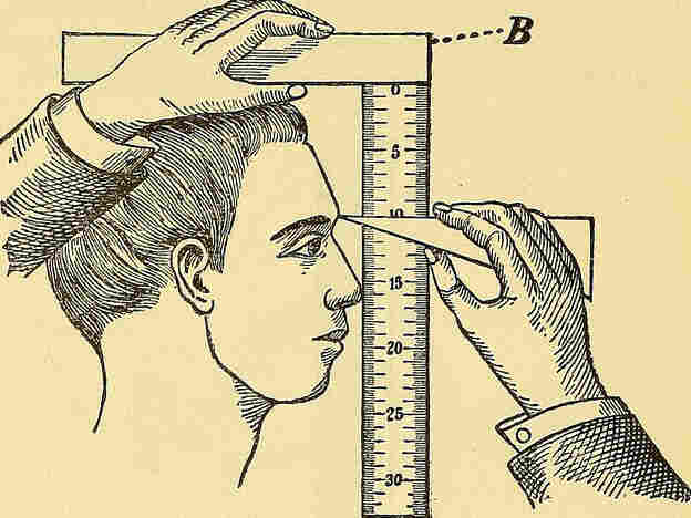 Better measurements help make learning visible, says John Hattie.