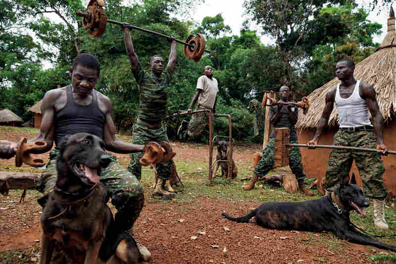 Members of the Ugandan army's dog-tracking team lift weights at the African Union base in Obo, Central African Republic. The dogs are Belgian Malinois shepherds, famed for their use in military operations, especially in tough conditions like the dense central African bush.