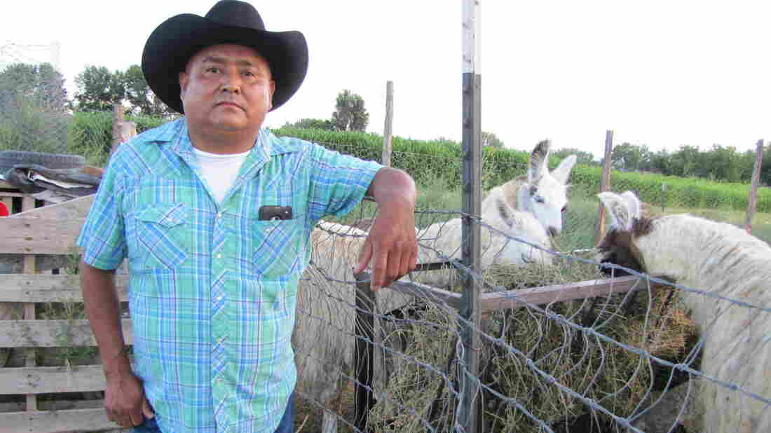 """After the Animas River spill, rancher Irving Shaggy is forced to travel a 70-mile round trip to get water for his livestock. """"It's going to be a long struggle,"""" he says."""