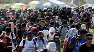 Migrants queue to continue their journey north at a newly built registration and transit center near Gevgelija, Macedonia, on Sunday. More than 5,000 migrants crossed into Serbia on Sunday, resuming a journey to western Europe after an overwhelmed Macedonia gave up its attempts to stem the flow of mainly Syrian refugees by force.