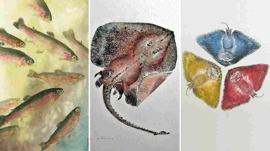 Fishing for fine art: Gyotaku, the art of making inked prints from real fish, originated in 19th century Japan. Above, three examples from modern Gyotaku artist Heather Fortner (from left): Under the Rainbow Rainbow Trout; Little big skate and Primary colors butterfly ray.