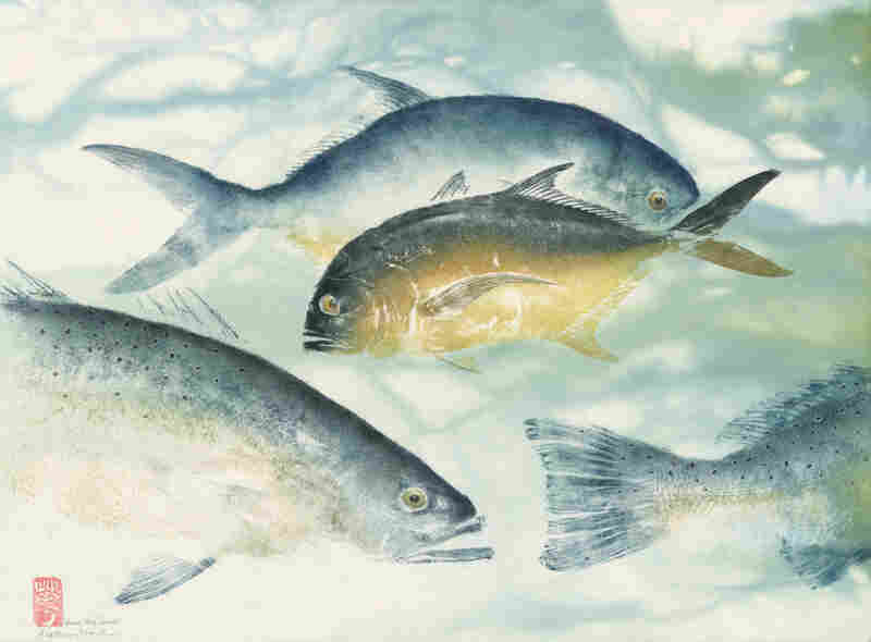 Wrong way Jack: jack crevalle, seatrout, permit