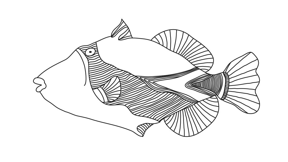 Similiar Hawaiian Trigger Fish Coloring Page Keywords
