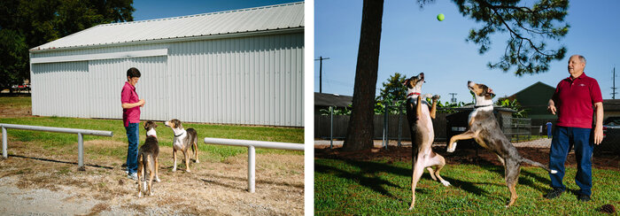 Cloning a canine requires that other dogs — donors and surrogates — undergo surgery. But the results are worth it, say the Duponts, playing here with Ken and Henry outside the couple's veterinary clinic in Louisiana. (Edmund D. Fountain/NPR)
