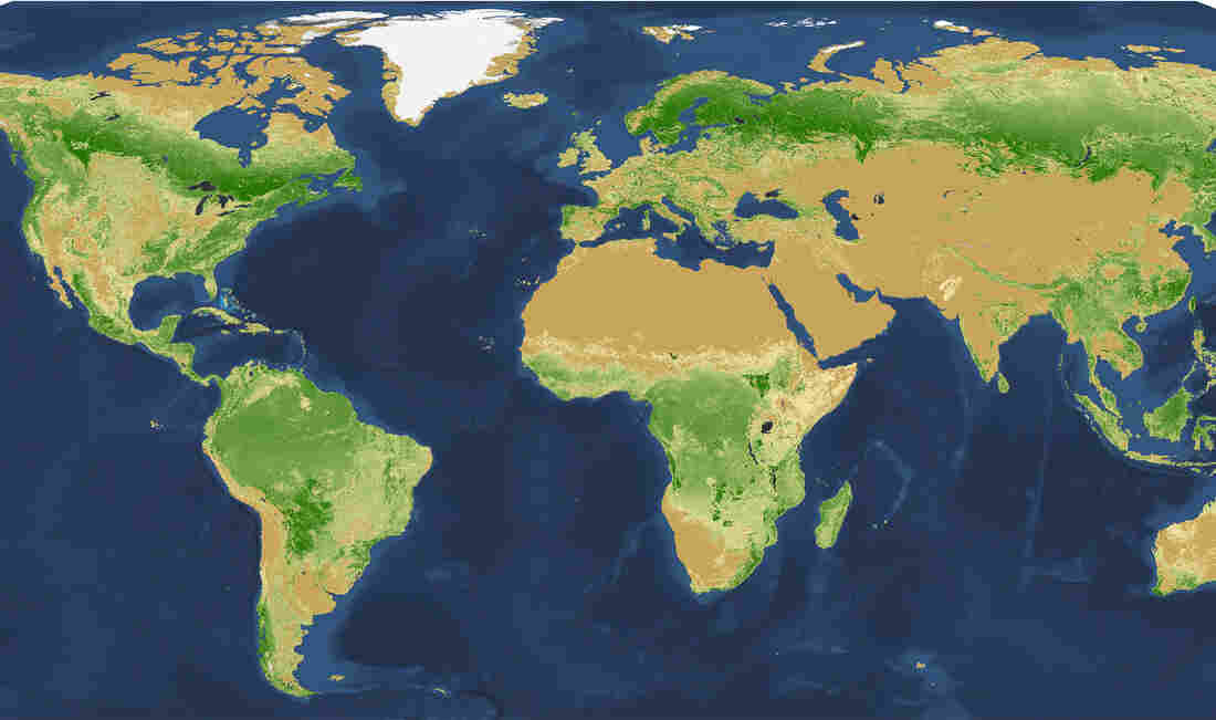 The Amazon basin leads the world in tree density: dark green represents 1 million or more trees per square kilometer. There are fewer trees in the lighter shades of green. The buff color has very few trees, and darkest brown represents areas with no trees.