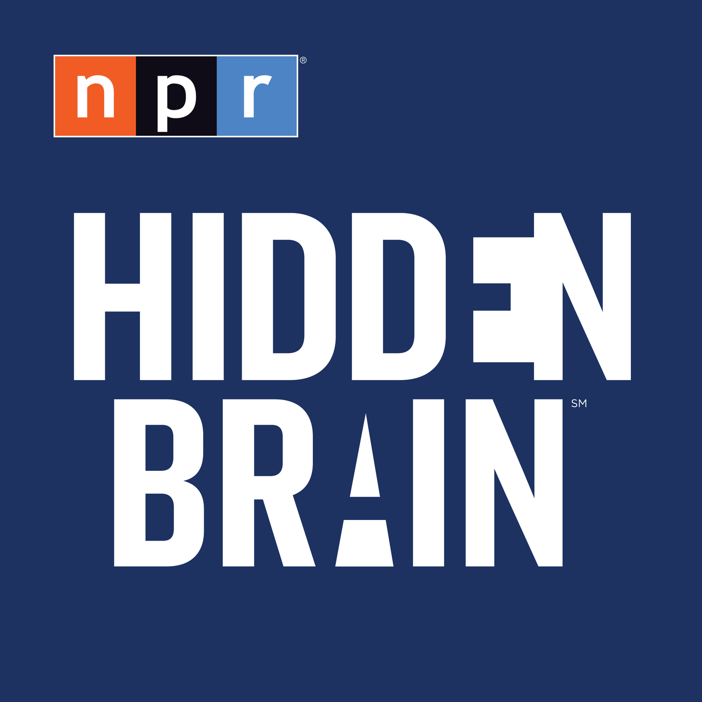 Image result for hidden brain podcast logo