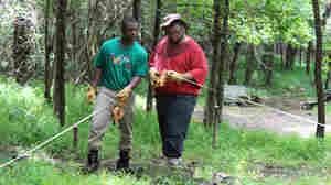 Teens Dig Into Black History As Urban Archaeologists