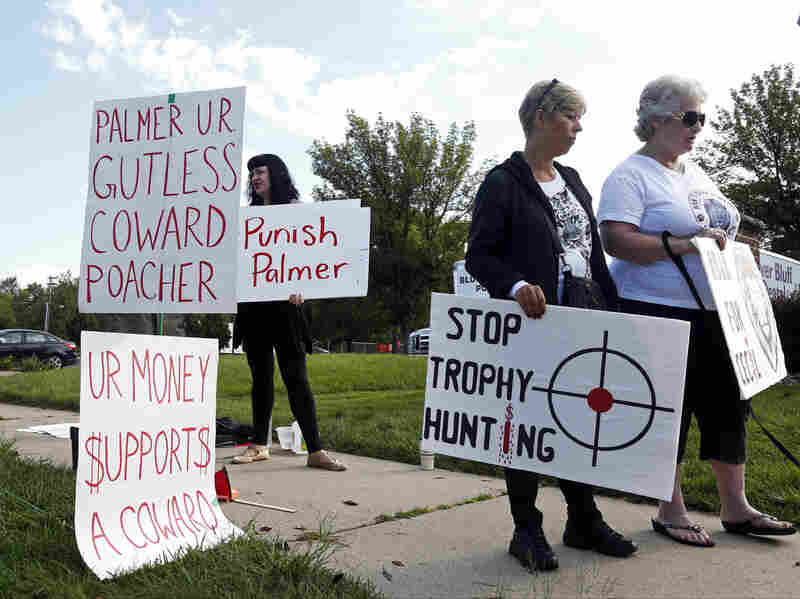 Demonstrators gather outside the dental practice of Walter Palmer, who returned to his practice Tuesday, in Bloomington, Minn.