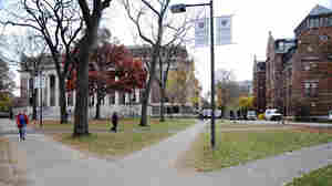 Harvard Yard, ringed primarily by freshmen dorms, is a big draw for camera-wielding tourists.