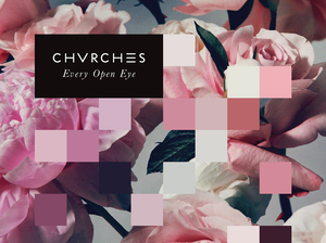 Cover art for Every Open Eye.