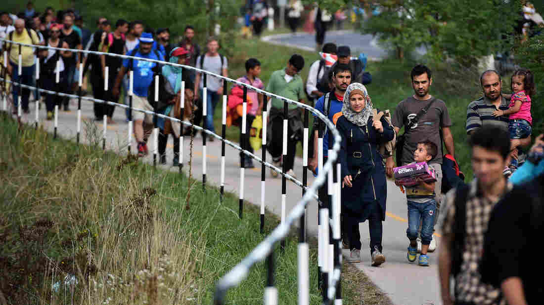 Hundreds of migrants walk to a holding center in Hegyeshalom, Hungary, near the Austrian border.