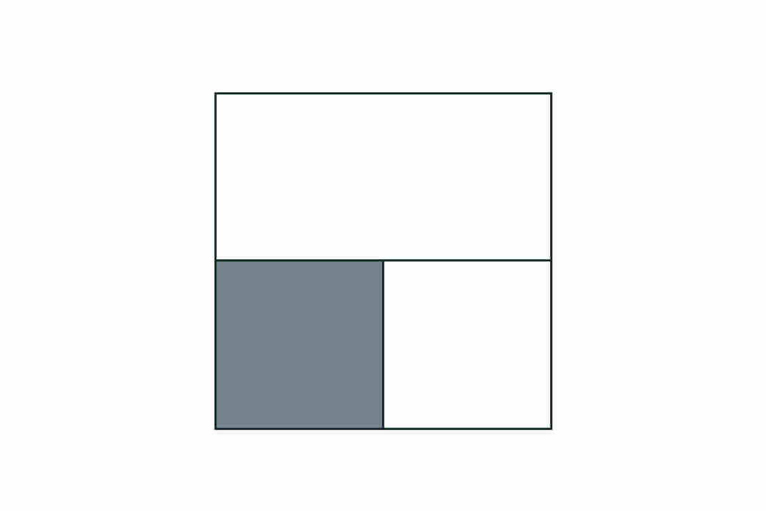 Students might think that the fraction of the shaded area in this rectangle is 1/3, 1/4 or 1 1/2.