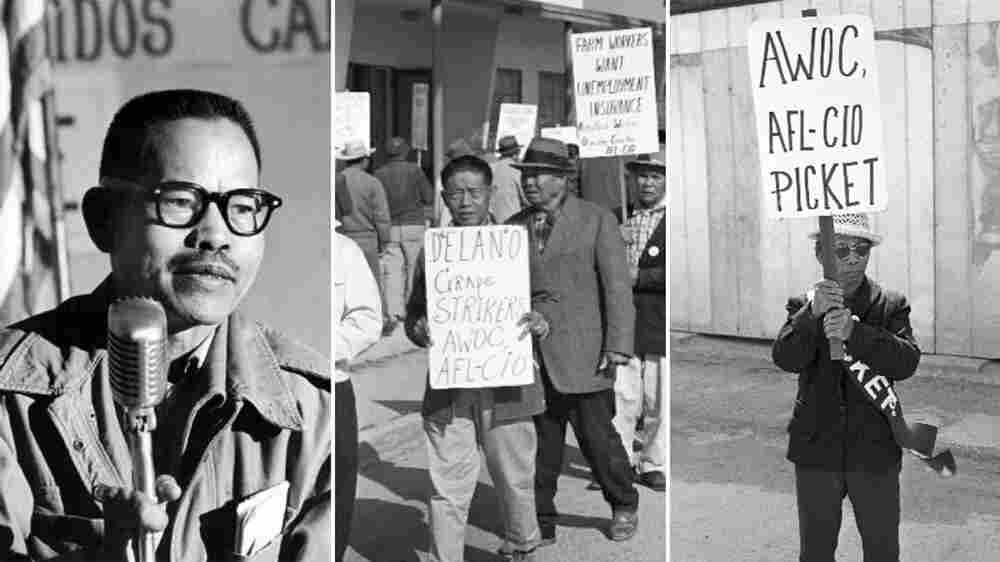 Grapes Of Wrath: The Forgotten Filipinos Who Led A Farmworker Revolution