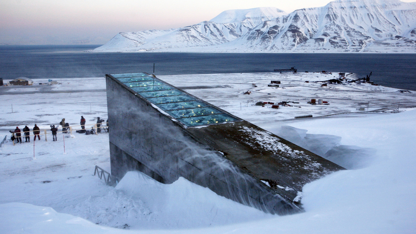 Image result for the doomsday seed vault