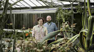 Chris Forsyth and Koen Holtkamp's new album, The Island, comes out Oct. 16.