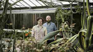 Songs We Love: Chris Forsyth & Koen Holtkamp, 'Cosmic Richard'