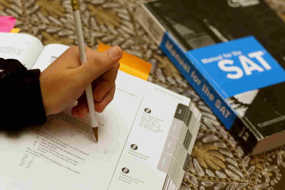 Suzane Nazir uses a Princeton Review SAT preparation book to study for the test on March 6, 2014, in Pembroke Pines, Fla.