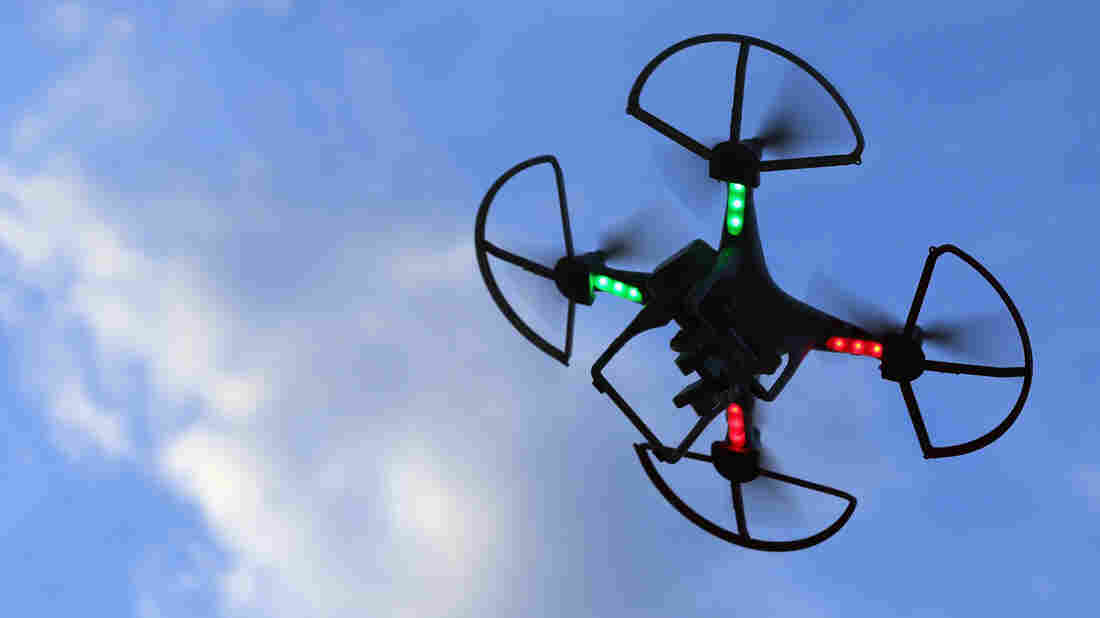 A recreational drone is flown above Old Bethpage, N.Y., in August. SkyPan uses drones for aerial photography.